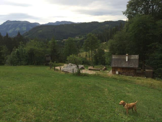 Holzknechthütte - Lunz am See - Lomamökki