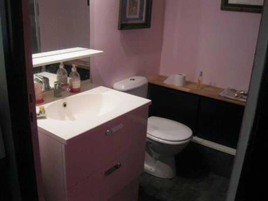 Salle d'eau avec Meuble sous vasque, WC, grande douche italienne