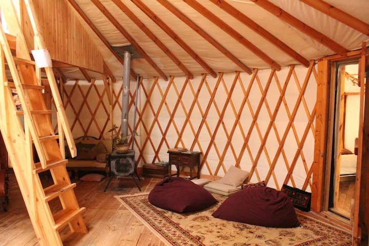 cozy panoramic yurt near  jerusalem - Aviezer - Jurta