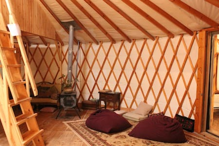 cozy panoramic yurt near  jerusalem - Aviezer - Yurt