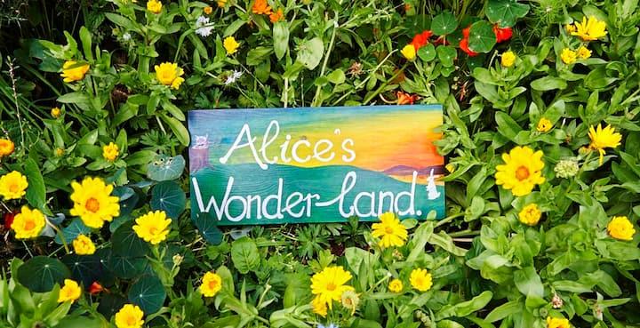 Alice's Wonderland Vegetarian BnB