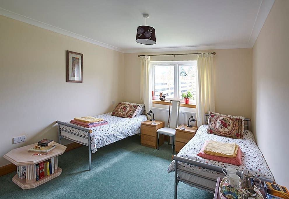 Twin Ensuite room with comfy beds and tea making facilities. Children can sleep on a futon mattress