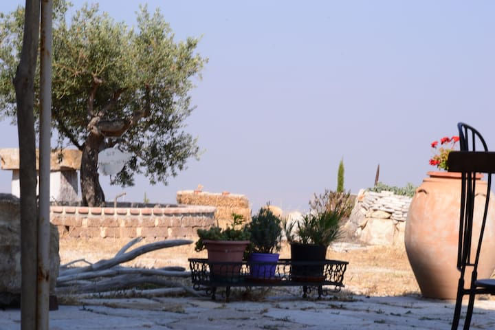 B&B Massavecchia - Colletorto