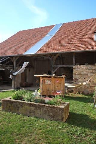 Rez de jardin Alsace Vosges du Nord