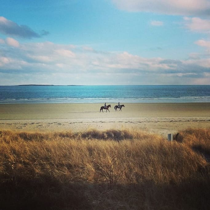 Looking at the beach.  Horsebackriders in the Fall.