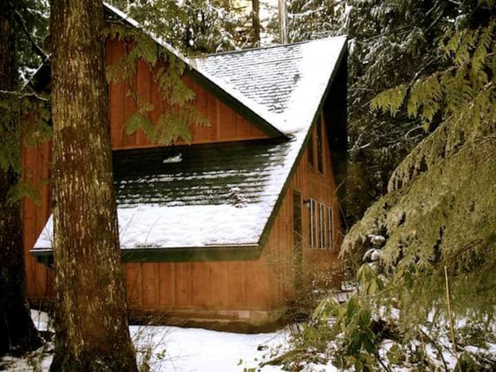 Snow Drift Cabin   Hottub/Wifi