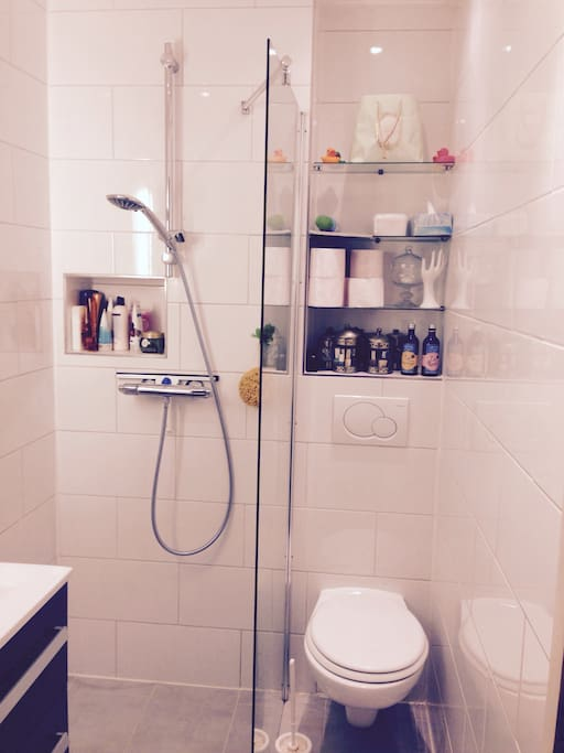 Tiny Bathroom but with all what you need: shower, toilet and sink