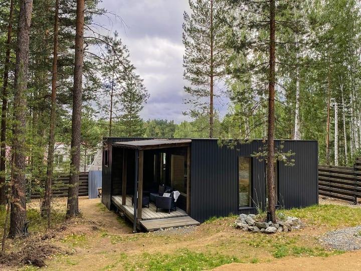 Elka House, скандинавский дом у леса