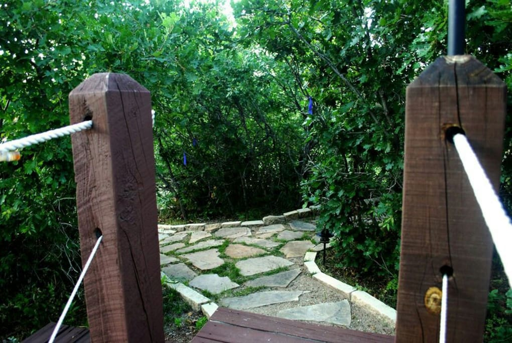 Beautiful yard with paths and bridges