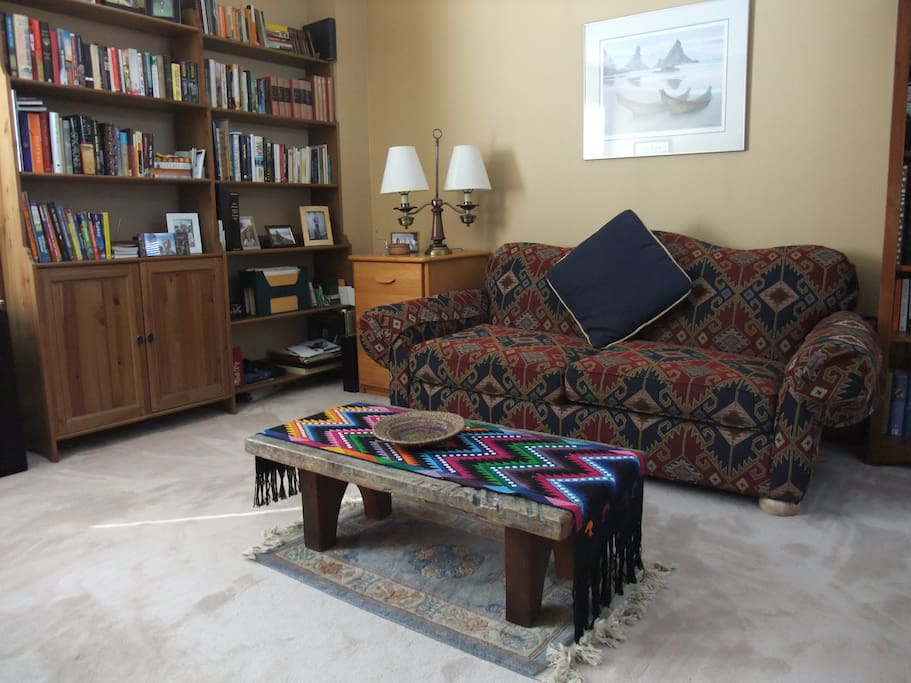 Comfortable couch with books and TV close at hand