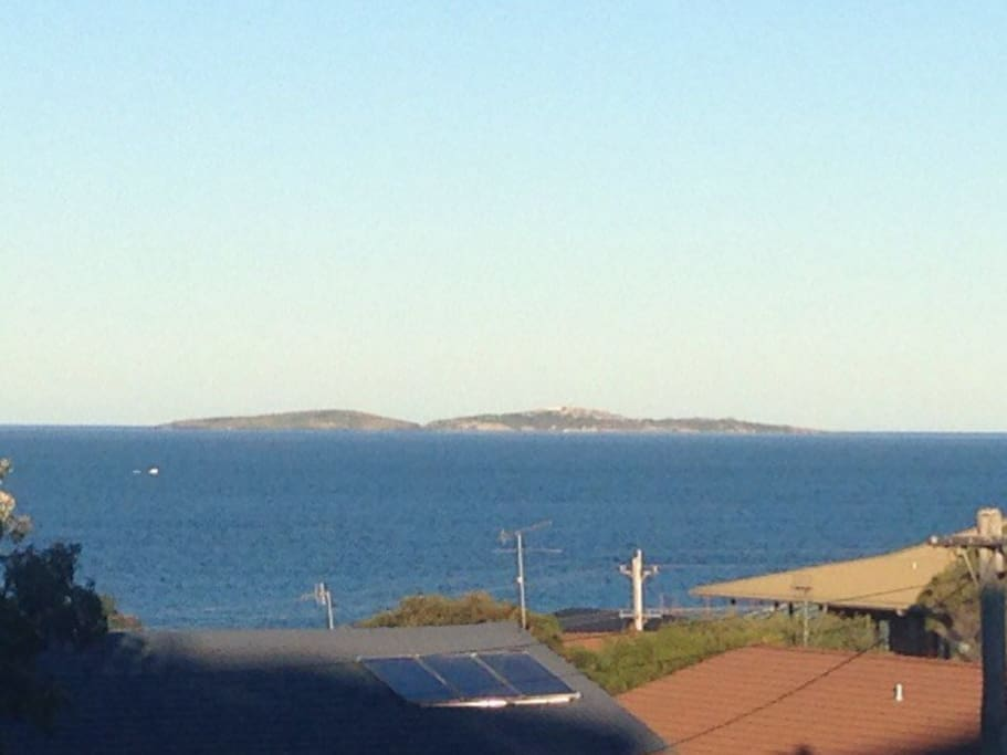 View out to Montague Island.