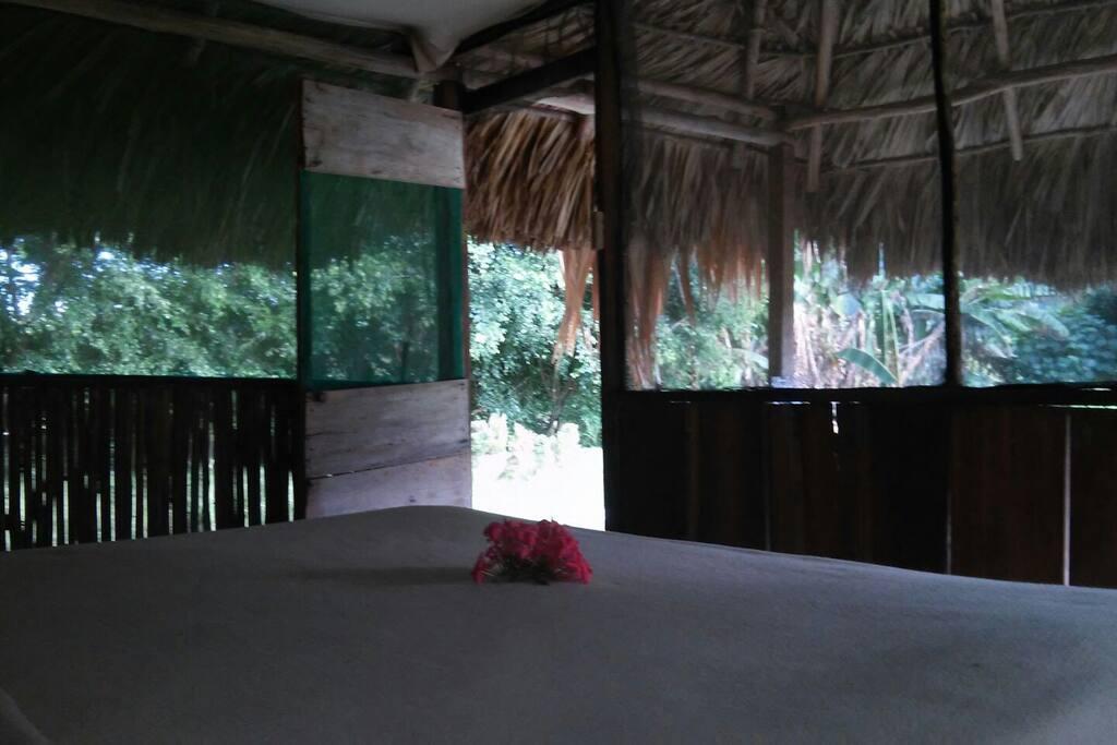 La cabaña cuenta con malla de mosquitero para mantener la vida salvaje afuera.