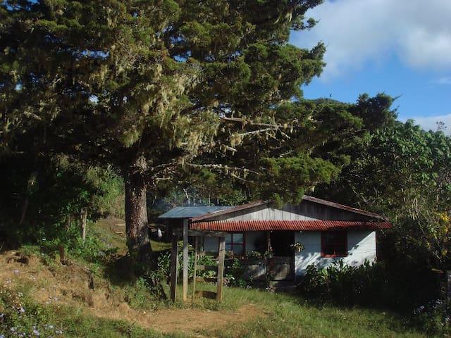 Mountain cabin - Cerro Kamuk - Tres Colinas de Buenos Aires - Cabin