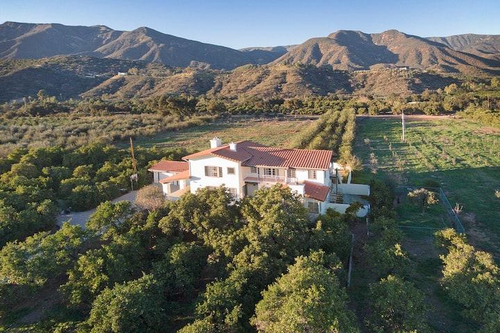 Huge Ojai Home, Pool, 10ac. Orchard