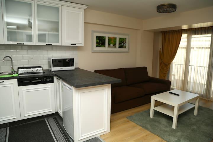 Şişli in the city center full furnished apartment