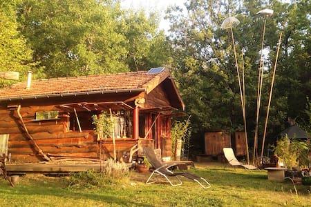 Cabane + caravane à l'orée des bois - Mézens