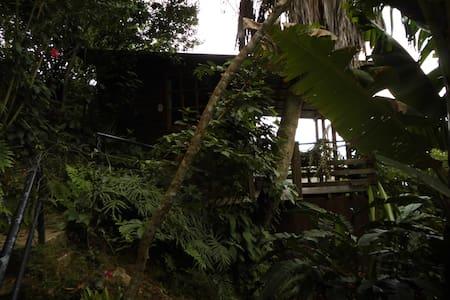 Cabana Mirador el Rosario - Bed & Breakfast