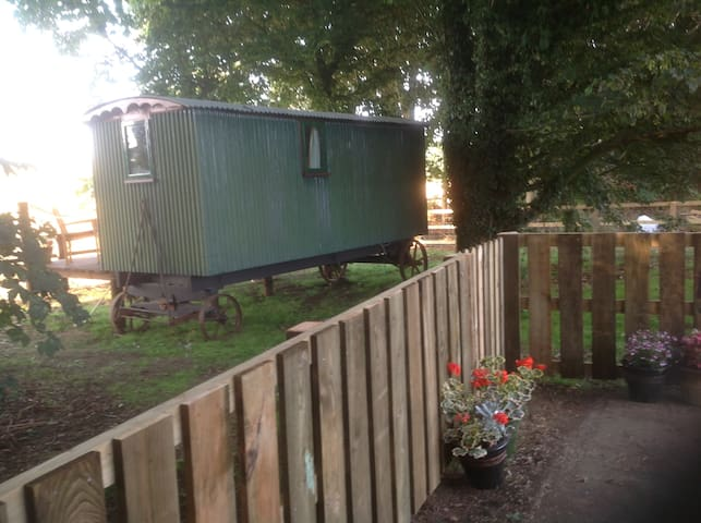 Unique and cosy Shepherd hut - Chipping Warden - Other