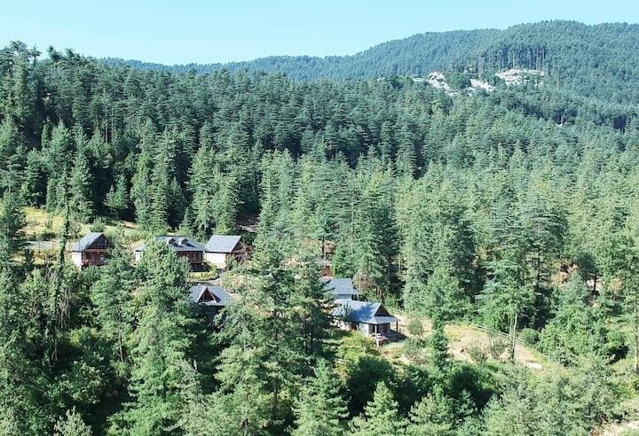 3 Cottages  Fresh Air  Relax & Rejuvenate