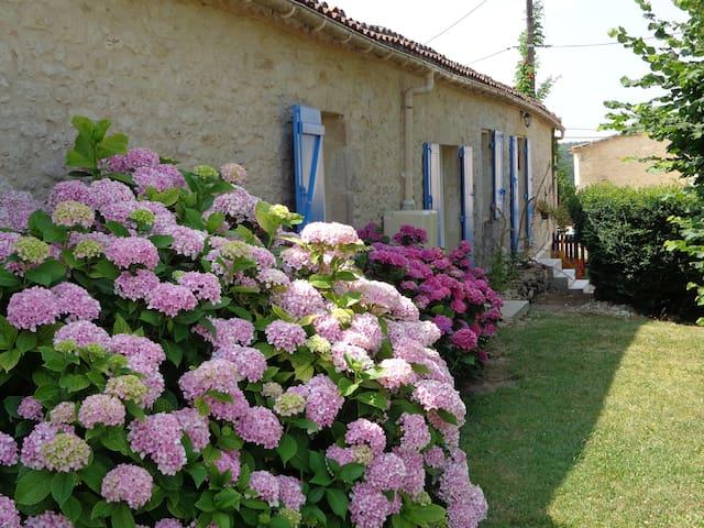 Gorce Petit Verdot chambres d'hôtes - Massugas - Bed & Breakfast