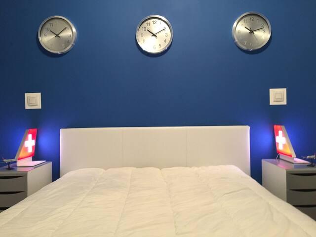 Jolie chambre double thème aviation - Annemasse - Flat
