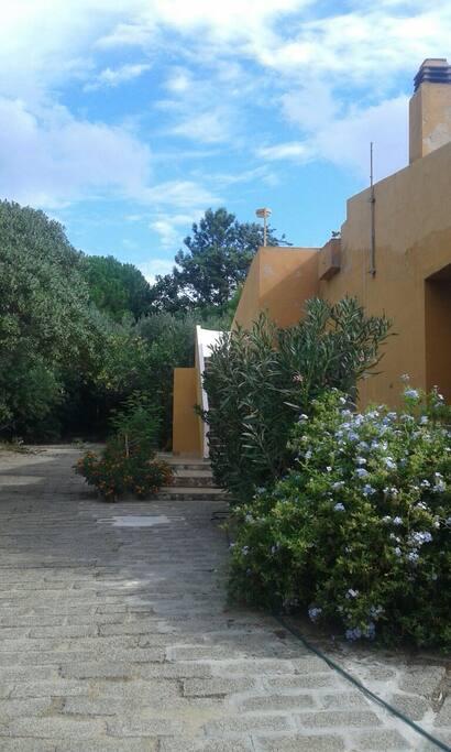 Accesso alla terrazza dal giardino