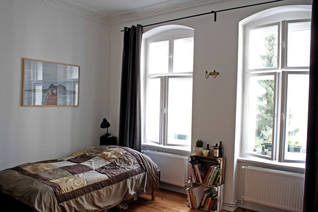 sunny and calm bedroom / living room