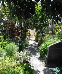 Gemütliche Wohnung mit Balkon - La Calera - Pis