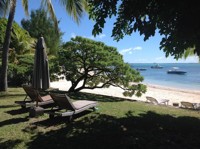 Tropical Garden and Private Beach - Roches Noires - Willa