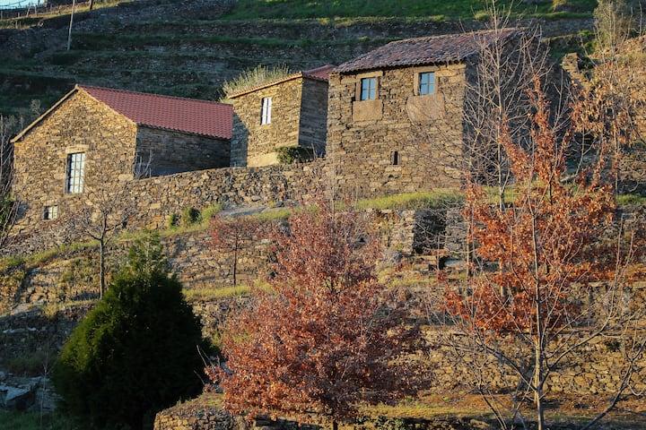 Cardenha do Douro