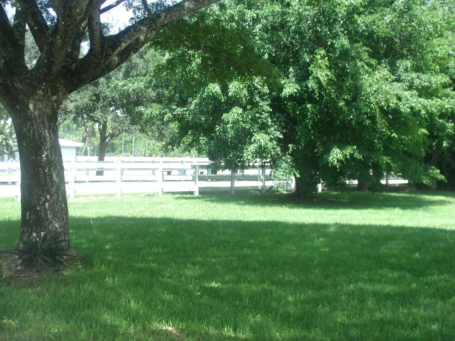 Park like setting