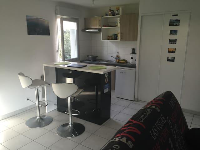 appartement neuf au rdc avec jardin appartamenti in affitto a tolosa midi pirenei francia. Black Bedroom Furniture Sets. Home Design Ideas