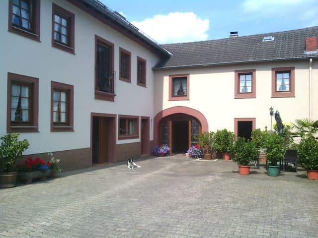 Bauernhof-Ferienwohnung - Neidenbach - Appartement