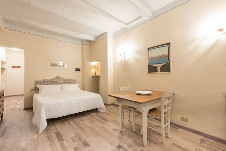 Oltrarno renovated apt walk to all attractions