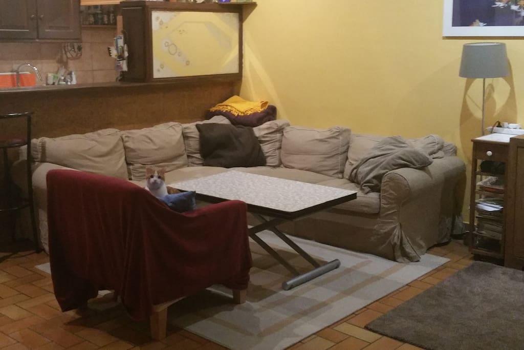 Salon/Living room
