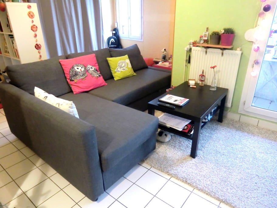 Salon avec canapé convertible (très confortable)