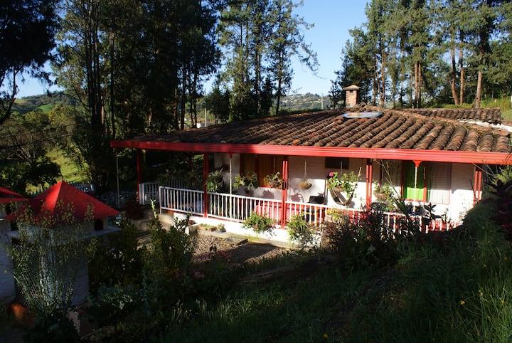 Come and enjoy Santa Elena