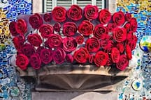 Casa Batlló Balcony St Georges Day Rose day