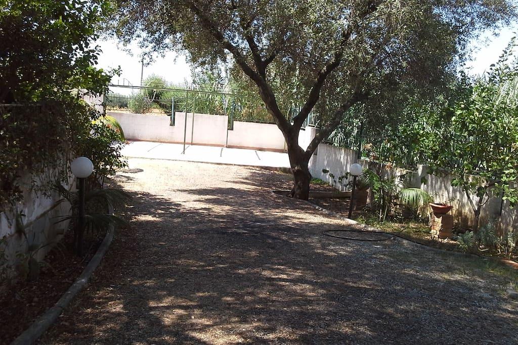 Parte del Giardino con Parcheggio interno