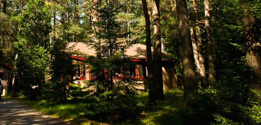 Peaceful Adirondack Cabin
