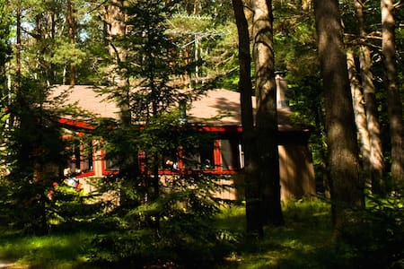 Peaceful Adirondack Cabin - Tupper Lake - Haus