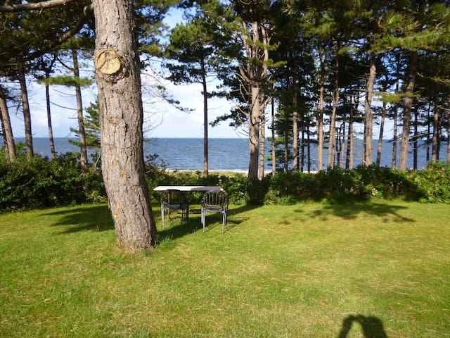 Apartment close to the sea - Nyhamnsläge - Appartement