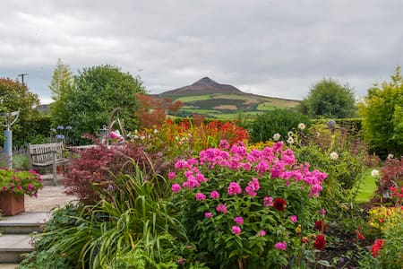 Sleep Soundly under Sugarloaf Mt 2. - Enniskerry - Bed & Breakfast