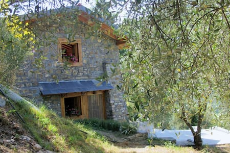 Country House Fronté nell' uliveto - Pieve di Teco - กระท่อม