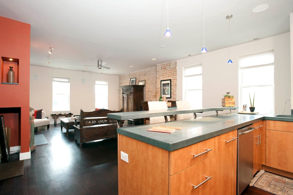 Downtown Chicago urban luxury home!
