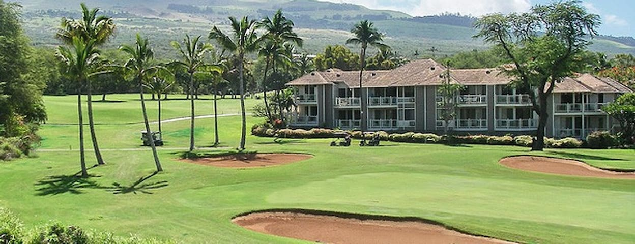 Golf/Ocean View Wailea A/C, free WiFi and Parking