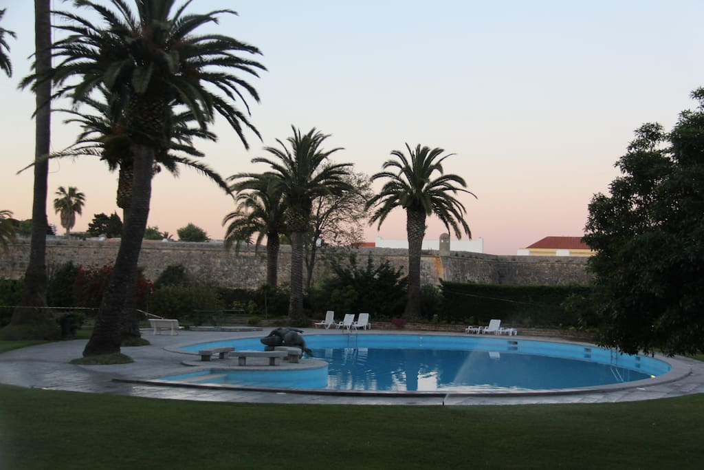 View on pool at dawn