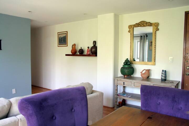 Cozy centric apartment