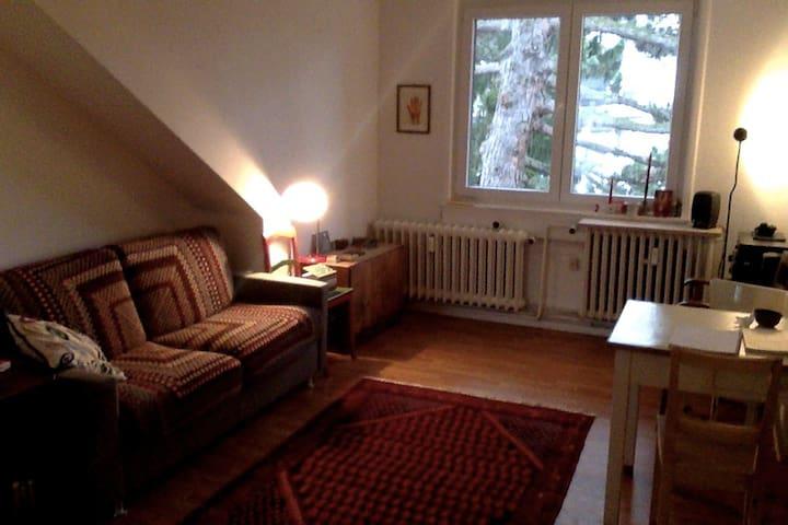 Beautiful apartment in frankfurt - Frankfurt - Apartamento