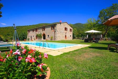 Villa Poggiolino with private pool - Poggio D'acona